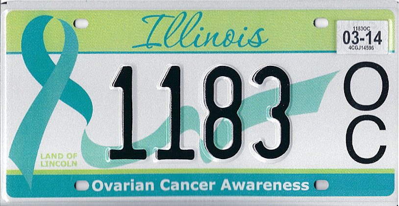 December 2009 expiration on Illinois Antique Vehicle plate. Image sent by Jack McGee of Meridian Idaho  sc 1 st  Plate Shack & Illinois 4 Y2K