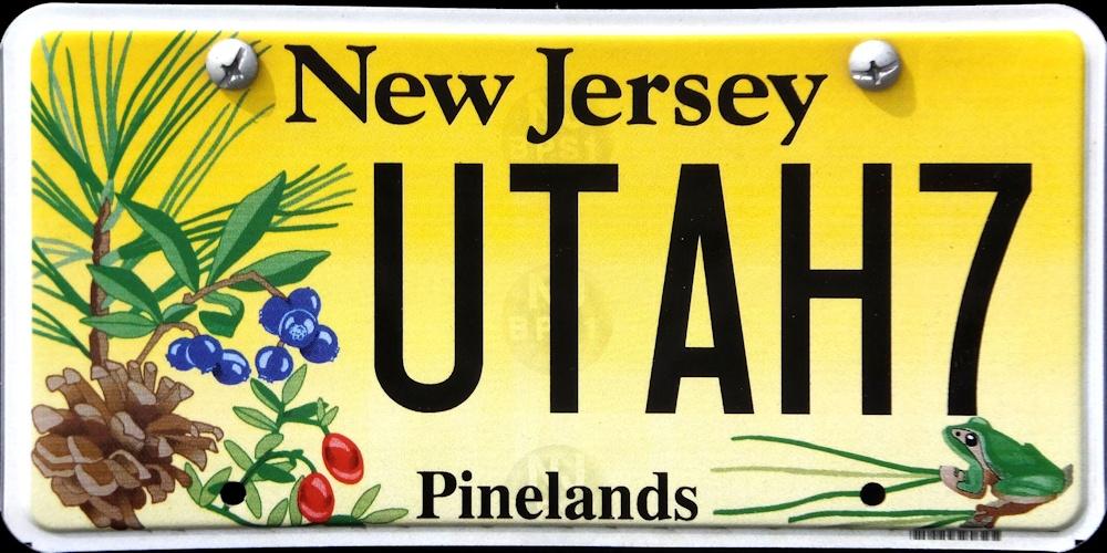 New Jersey 4 Y2k
